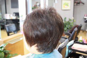 カット後そのまま ショートスタイル 多毛 くせ毛 硬毛 広がるくせ