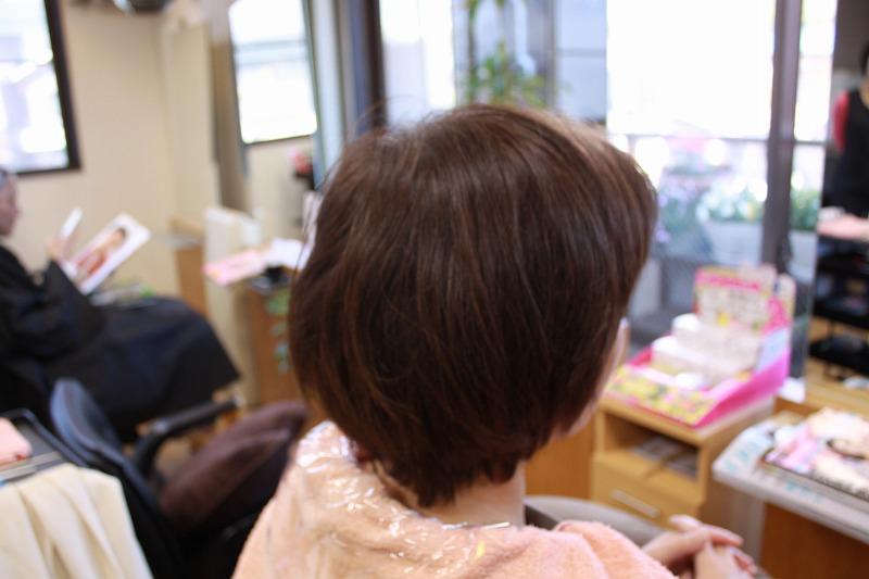ビフォー 髪が多い 襟足の毛流くせ