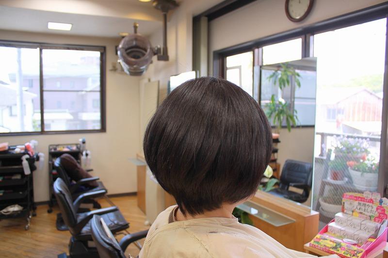 仕上がり ヘナで髪質改善 さらさらツヤツヤ