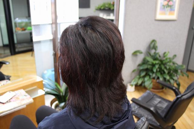くせ毛が徐々に落ち着き易くなってきた